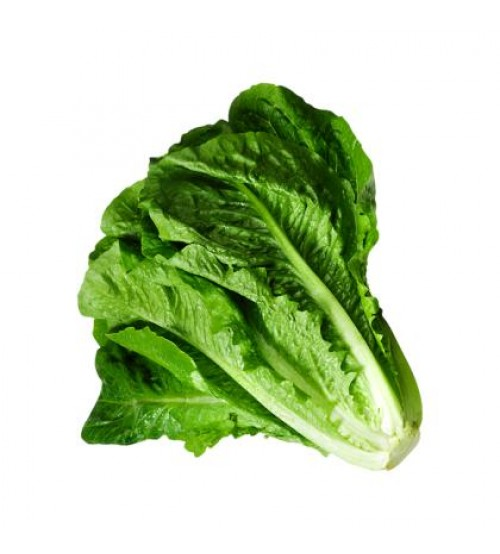 Lettuce Leafy 259g (Approx 160 g - 300g)